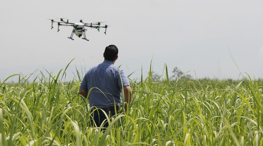 Drone et agriculture