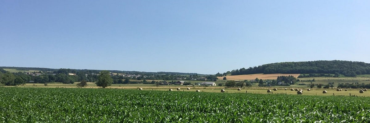 paysage champs 1200x400